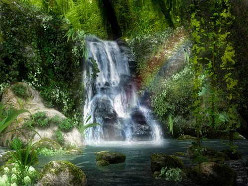waterfall rainbow forest
