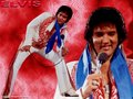 Awesome! - elvis-presley wallpaper