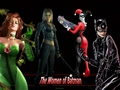 Batman's Women - batman wallpaper
