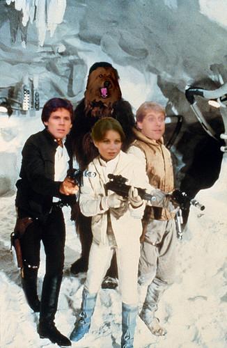 Bear, Sindy, Dave & Grossie ster Wars style