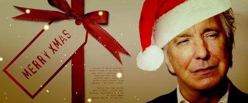 क्रिस्मस Siggy