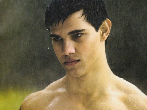 Jacob Black fond d'écran
