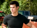 jacob-black - Jacob Black Wallpaper  wallpaper