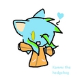 Kammi the hedgehog - sonic-girl-fan-characters photo