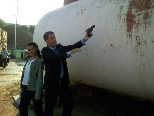 Michael Weatherly Twitter Picture - tiva Photo