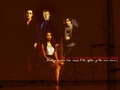 Pet-Bonnie+Klaus+Damon+Stefan - bonnie-mccullough-bennett wallpaper