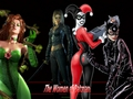 Poison Ivy, Catwoman, Talia Al Ghul and Harley Quinn - femme-fatales wallpaper