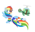 pelangi, rainbow Dash and Tank