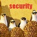 Security - penguins-of-madagascar icon