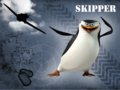 Skipper - penguins-of-madagascar wallpaper