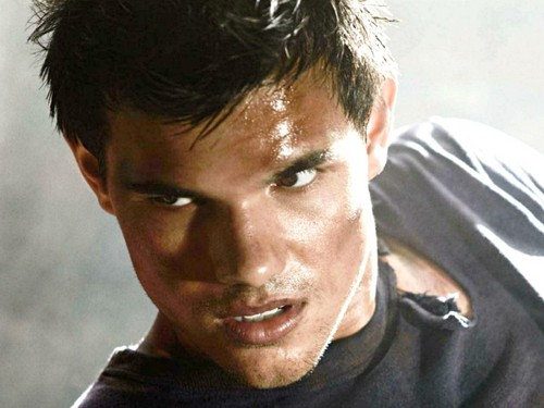 Taylor Lautner wallpaper possibly containing a portrait titled Taylor Lautner Wallpaper