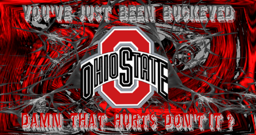 Ohio State universidad baloncesto fondo de pantalla titled YOU'VE JUST BEEN BUCKEYED