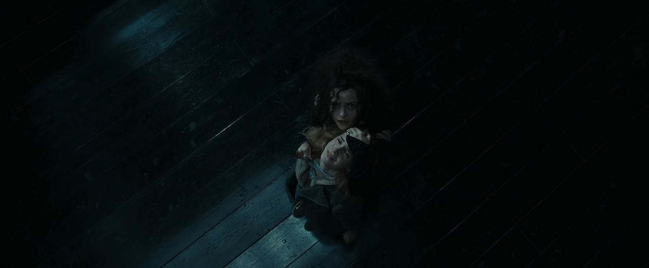 The Gallery For Gt Bellatrix And Hermione Torture Scene
