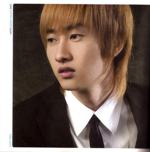 Lee Hyukjae / Lee Eunhyuk پیپر وال probably containing a business suit and a suit entitled Eunhyuk Oppa <3