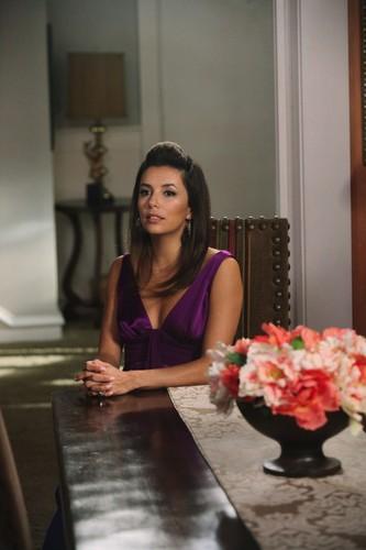 Gabrielle Solis Season 8