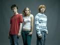 Harry Potter cast - harry-potter photo
