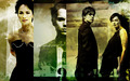 Lena Headey + Thomas Dekker (TSCC) - lena-headey wallpaper