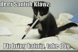 Santuh Klawz Cat