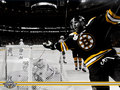 Stanley Cup Champions:  David Krejci - boston-bruins wallpaper