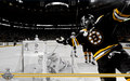 Stanley Cup Champions: David Krejci