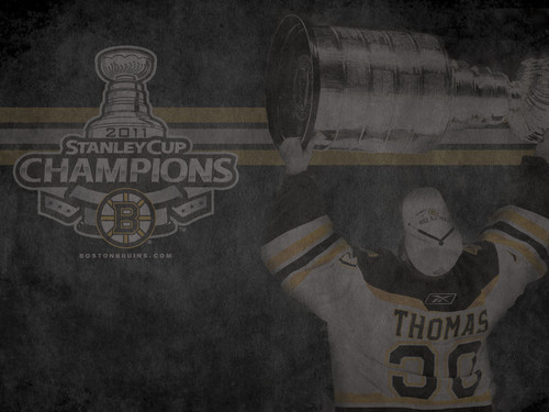 Stanley Cup Champions: Tim Thomas