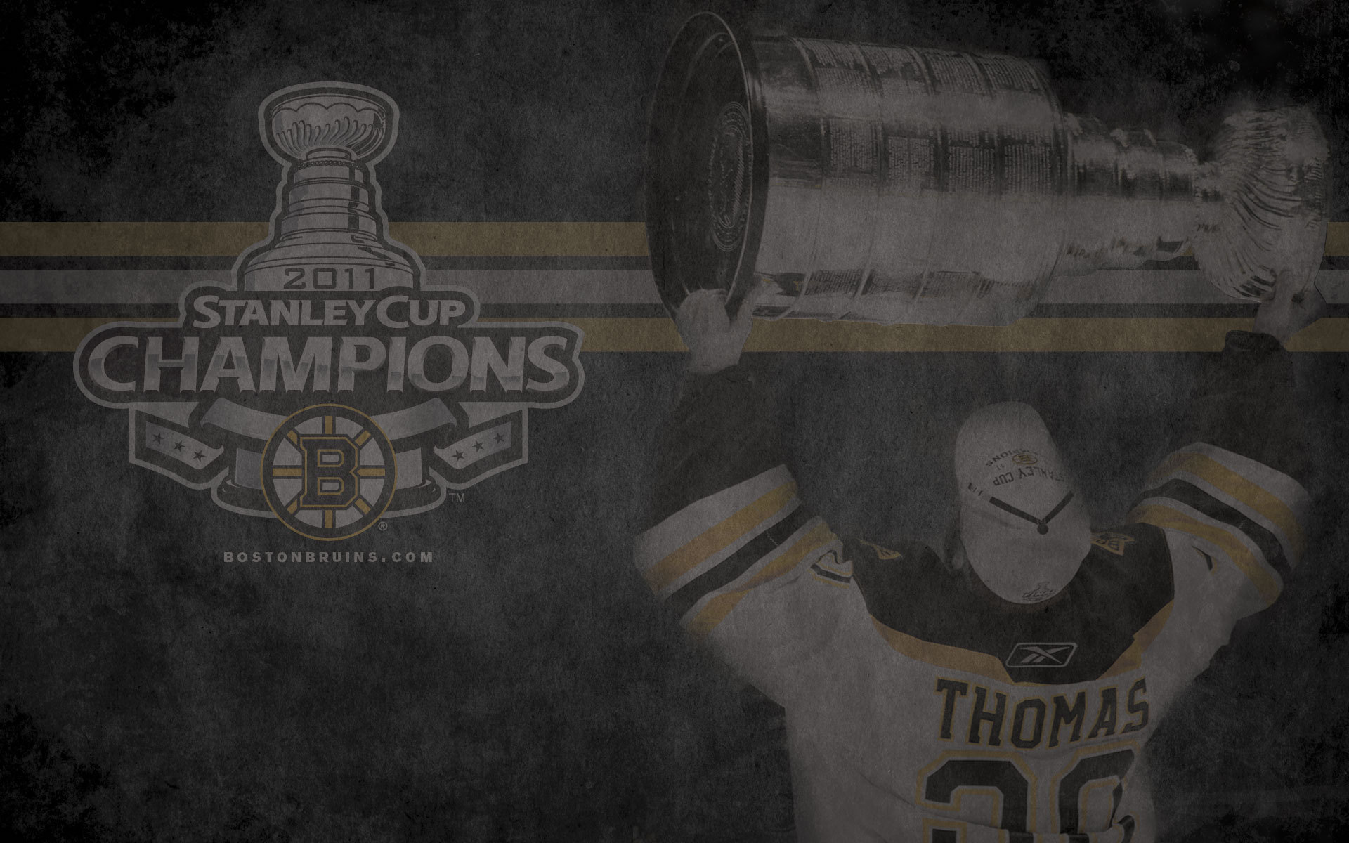 Stanley Cup Champions Tim Thomas Boston Bruins Wallpaper