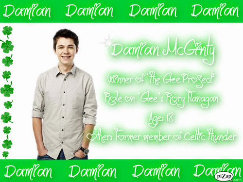 The Glee Project's Damian McGinty - the-glee-project Fan Art