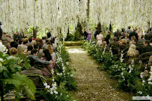 Twilight 201 - twilight-movie Photo