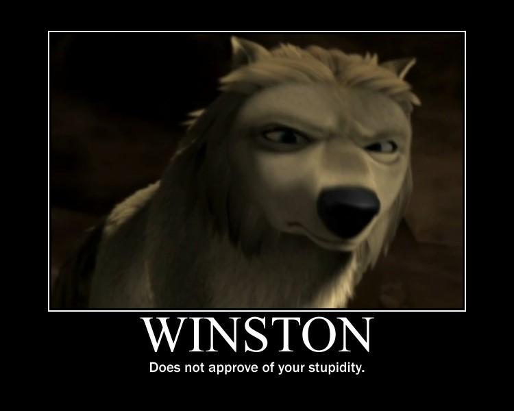 Winston: No megusta