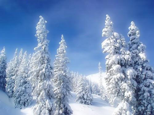 Wondeful Winter kertas dinding