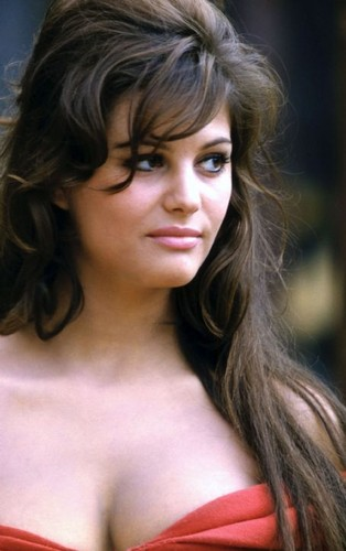 Claudia Cardinale wallpaper containing a portrait entitled claudia