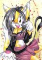 pretty honey the cat