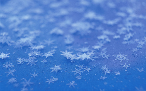 Christmas wallpaper entitled snowflakesandfrost1