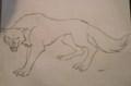アニメ 狼, オオカミ