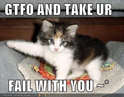 Cat says gtfo