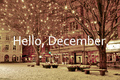 Hello Winter! - winter photo