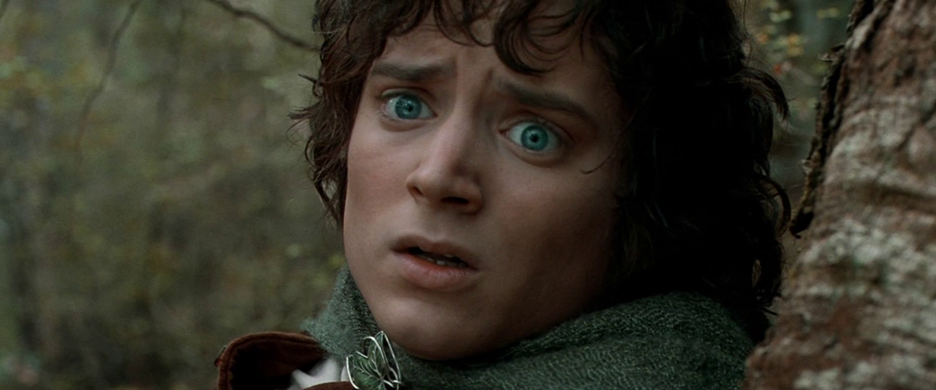What Was Frodo S Title In Lord Of The Rings