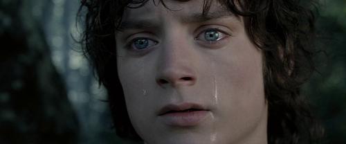 द लॉर्ड ऑफ द रिंग्स वॉलपेपर titled Frodo (Elijah Wood)