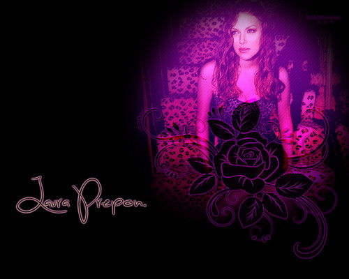 Laura Prepon wallpaper probably with a concert called Laura Prepon Wallpaper