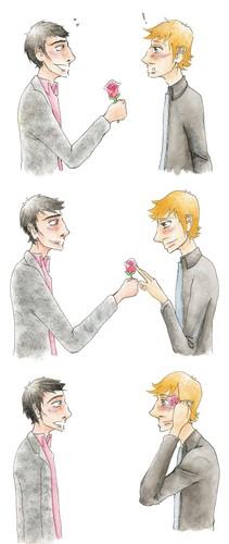Matt gives Dom a rose