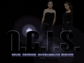 ncis - N.C.I.S. Abby & Ziva wallpaper
