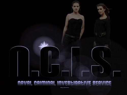 N.C.I.S. Abby & Ziva