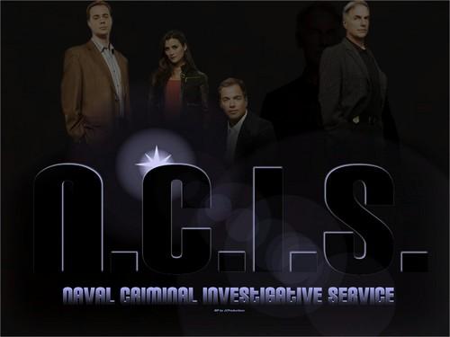N.C.I.S. The Team