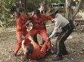 Pretty Little Liars - Episode 2.14 - Through Many Dangers, Toils and Snares - Promotional Photo  - pretty-little-liars-tv-show photo