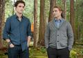 Stills Breaking Dawn 1 (Amanecer) - twilight-series photo