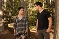 The Twilight Saga: Breaking Dawn - Part 1 Breaking Dawn Stills