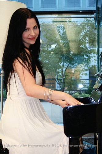 the lovely amy lee
