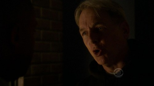 8x23 - Swan Song - leroy-jethro-gibbs Screencap