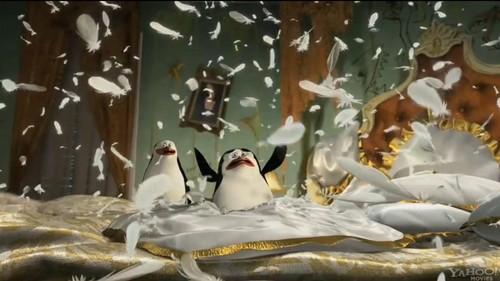 Merry Madagascar 2012 Penguins Of Madagascar Photo