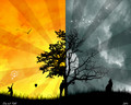 Day and night - paranormal-lovers wallpaper